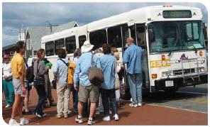 Vineyard Transit Authority bus