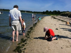 Children and their parents on the hunt for mollusks and island treasures at Senegekontacket Pond.